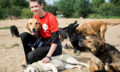 «Лучший друг» с «Ростелекомом»: итоги благотворительной акции