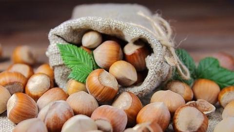 Ferrero и Earthworm Foundation: результаты программы ответственного отбора поставщиков лесных орехов